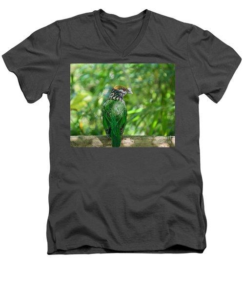 Subtropical Forest Dweller Men's V-Neck T-Shirt