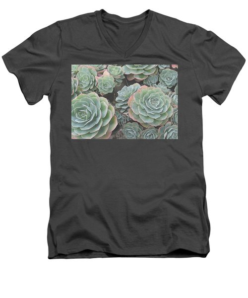 Succulent 2 Men's V-Neck T-Shirt by David Hansen