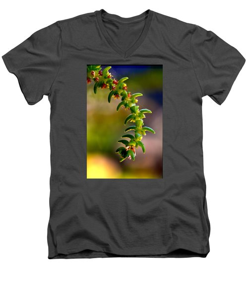 Succulent Hanging Men's V-Neck T-Shirt by Josephine Buschman
