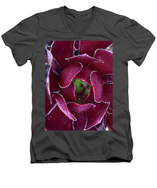 Succulent Mystery Men's V-Neck T-Shirt by Russell Keating