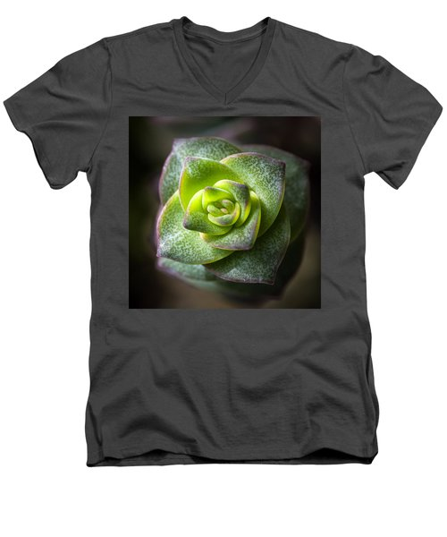 Men's V-Neck T-Shirt featuring the photograph Succulent Plant by Catherine Lau