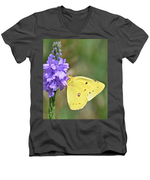 Sulfur Butterfly Men's V-Neck T-Shirt
