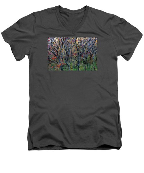 Sumac Grove Men's V-Neck T-Shirt