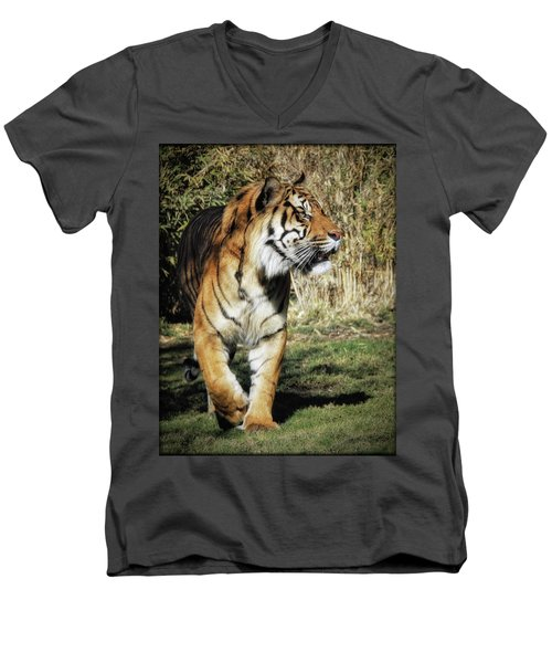 Sumatran Tiger  Men's V-Neck T-Shirt