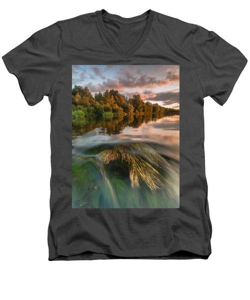 Summer Afternoon Men's V-Neck T-Shirt