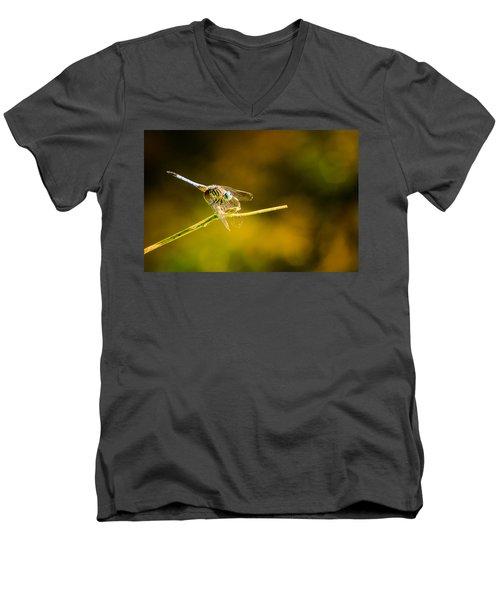 Summer Days Men's V-Neck T-Shirt by Craig Szymanski