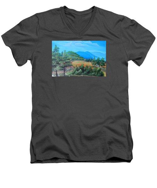 Summer Fields 2 Men's V-Neck T-Shirt by Remegio Onia