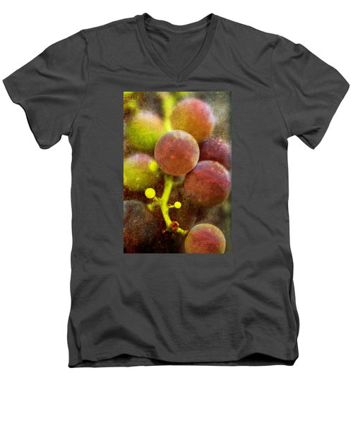 Men's V-Neck T-Shirt featuring the photograph Summer Grapes by Tom Singleton