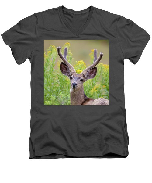 Summer Mule Deer Men's V-Neck T-Shirt by Jack Bell