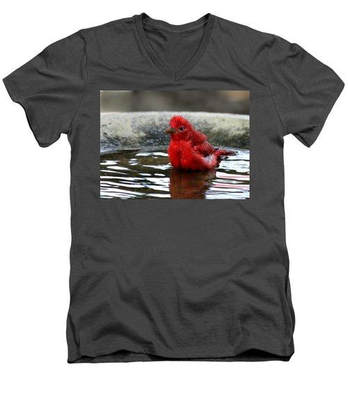 Summer Tanager In Bird Bath Men's V-Neck T-Shirt