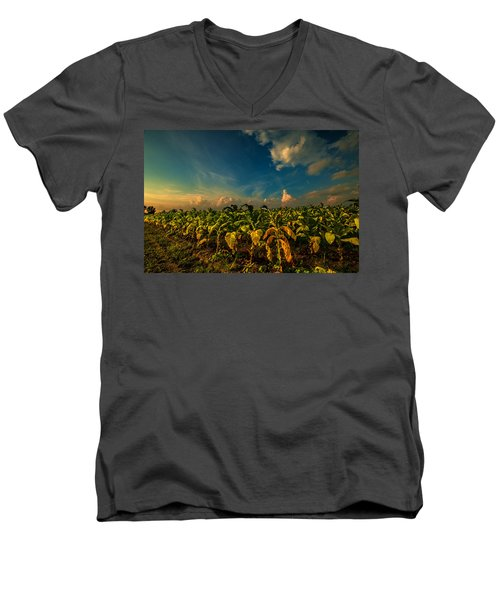 Summer Tobacco  Men's V-Neck T-Shirt by John Harding