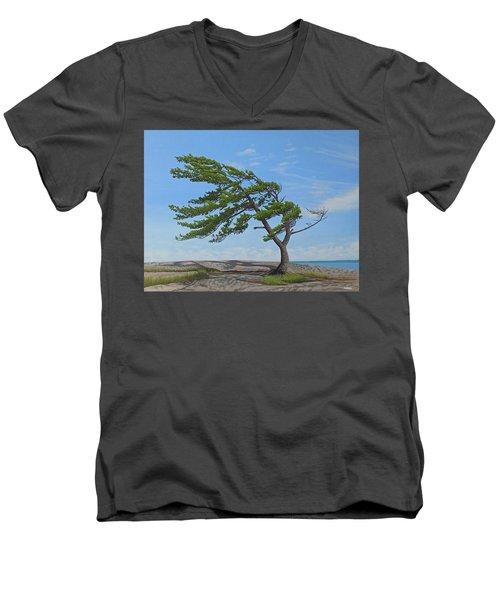 Summer Wind Men's V-Neck T-Shirt