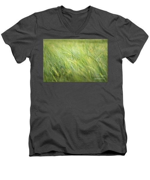 Summergreen Men's V-Neck T-Shirt