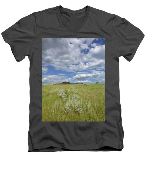 Summertime On The Prairie Men's V-Neck T-Shirt