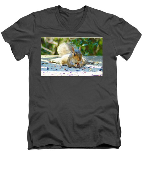 Sun Bathing Squirrel Men's V-Neck T-Shirt by Kathy Kelly