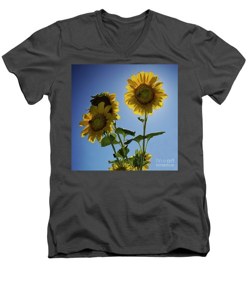 Men's V-Neck T-Shirt featuring the photograph Sun Flowers by Brian Jones
