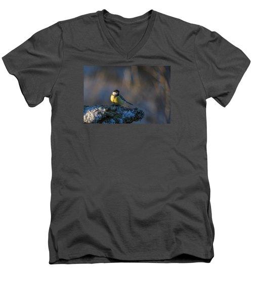 Sun In The Eye Men's V-Neck T-Shirt