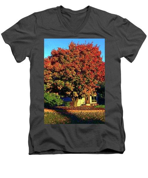 Sun-shining Autumn Men's V-Neck T-Shirt