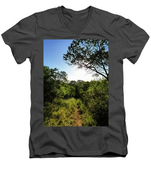 Sun Shining Over A Hiking Path In The Atlantic Forest Men's V-Neck T-Shirt