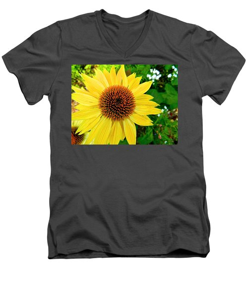 Sun Soaked Echinacea Men's V-Neck T-Shirt
