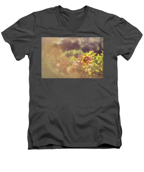 Sunbathe Morning Men's V-Neck T-Shirt