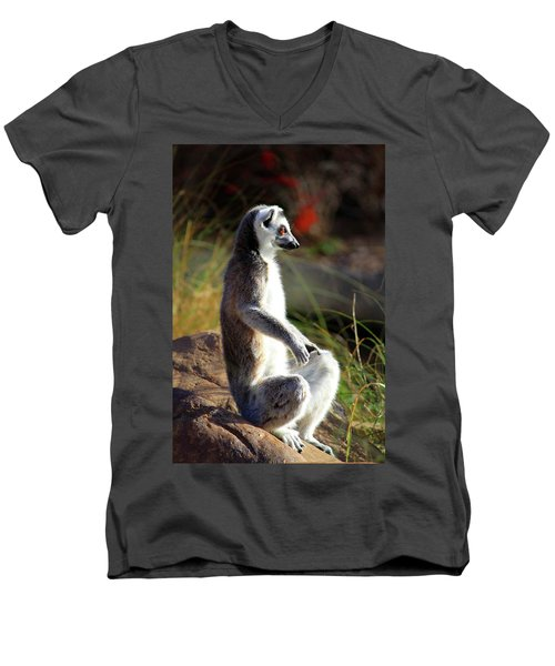 Sunbathing Men's V-Neck T-Shirt by Inspirational Photo Creations Audrey Woods