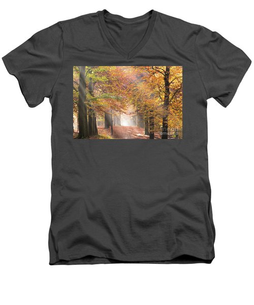 Sunbeams In A Forest In Autumn Men's V-Neck T-Shirt