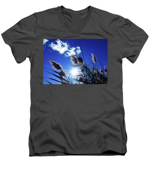 Sunburst Reeds Men's V-Neck T-Shirt