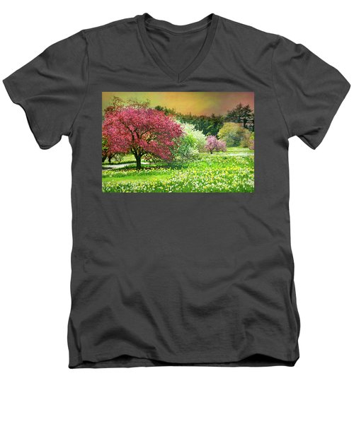Men's V-Neck T-Shirt featuring the photograph Sunday My Day by Diana Angstadt