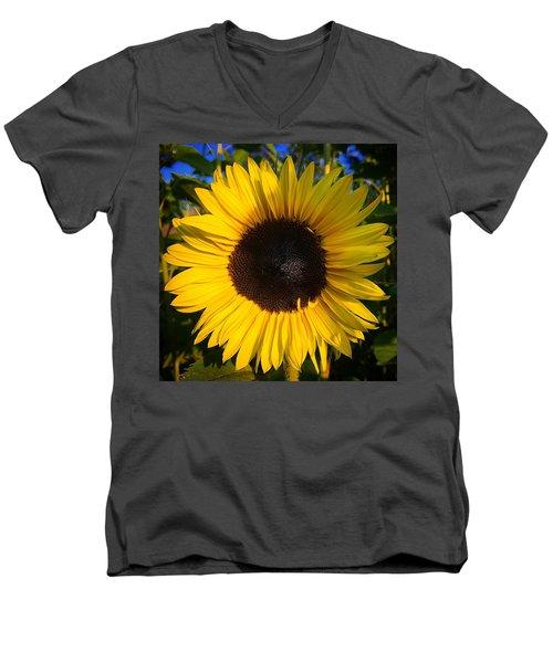 Sunflower  Men's V-Neck T-Shirt