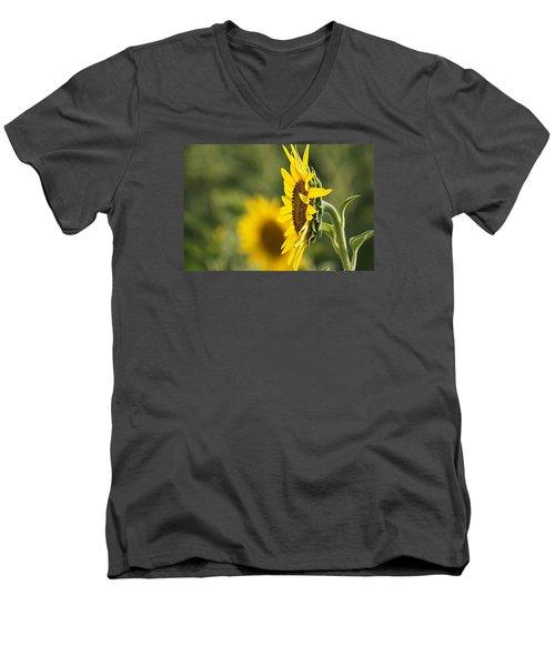 Sunflower Delight Men's V-Neck T-Shirt by Kathy Churchman