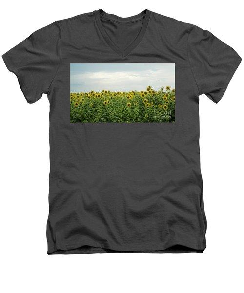 Sunflower Field Men's V-Neck T-Shirt