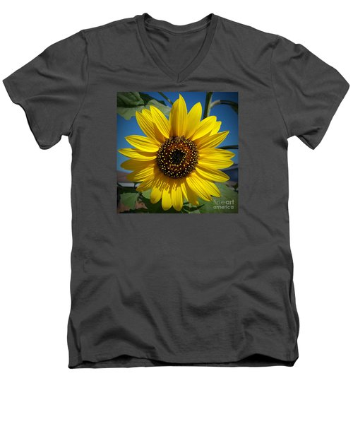 Sunflower Glow Men's V-Neck T-Shirt by Loriannah Hespe