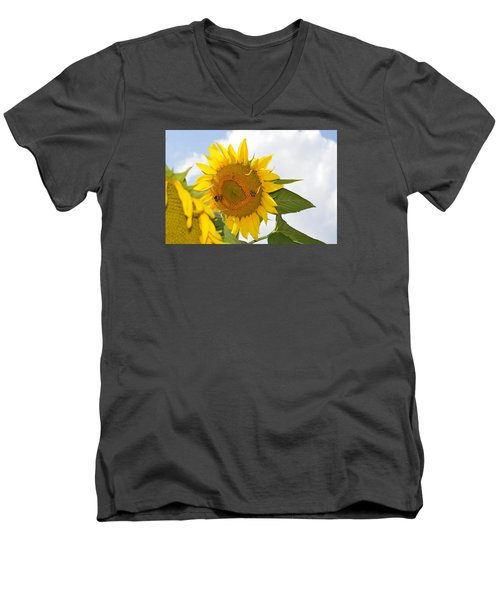 Sunflower Men's V-Neck T-Shirt by Linda Geiger