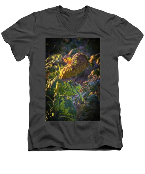 Sunflower Repose Men's V-Neck T-Shirt