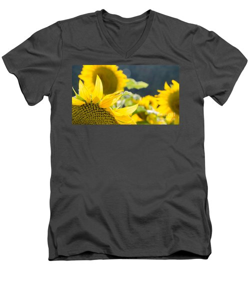 Sunflowers 14 Men's V-Neck T-Shirt
