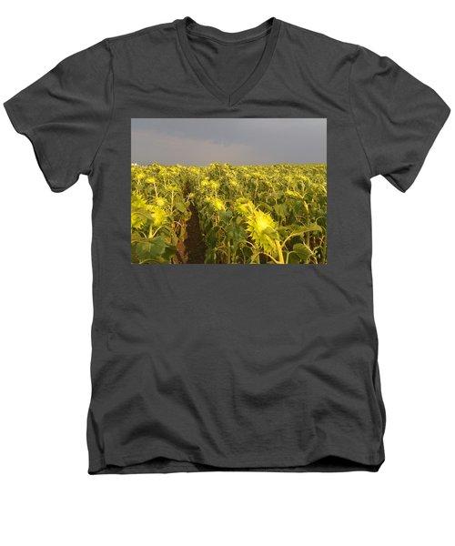 Sunflowers Before The Storm Men's V-Neck T-Shirt