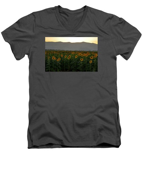 Men's V-Neck T-Shirt featuring the photograph Sunflowers by Dubi Roman