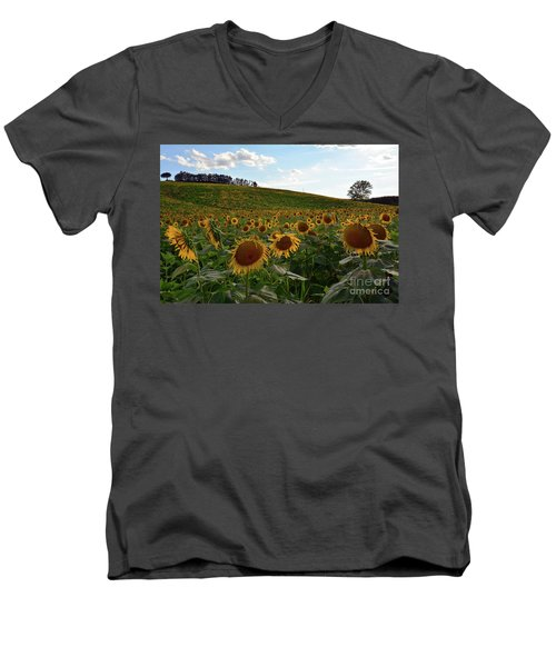 Sunflowers Fields  Men's V-Neck T-Shirt
