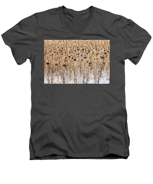 Sunflowers In Snow Men's V-Neck T-Shirt