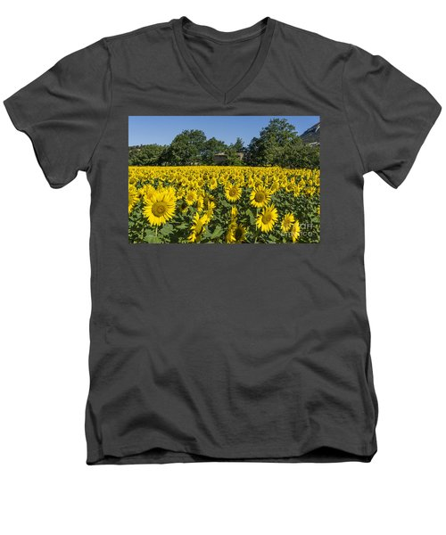 Men's V-Neck T-Shirt featuring the photograph Sunflowers Provence  by Juergen Held