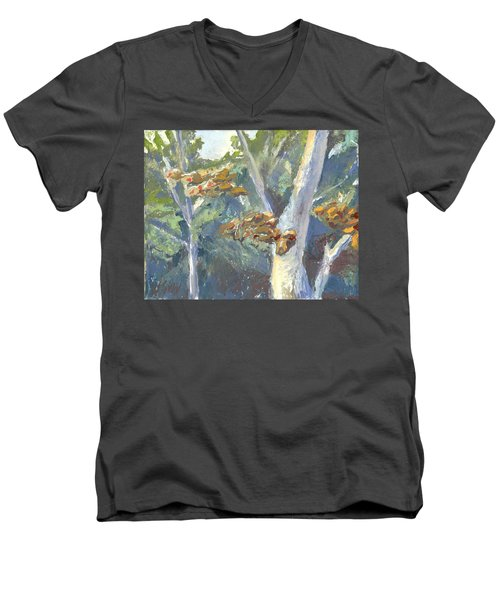 Sunlight And Sycamores Men's V-Neck T-Shirt