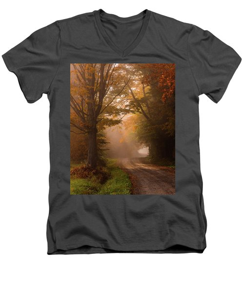 Serenity Of Fall Men's V-Neck T-Shirt