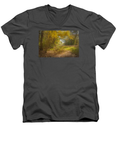 Sunlit Meadow In Borderland Men's V-Neck T-Shirt