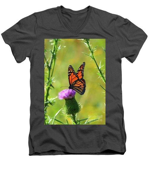 Sunlit Monarch  Men's V-Neck T-Shirt