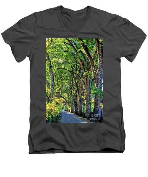 Sunlit Path Men's V-Neck T-Shirt by Gina Savage
