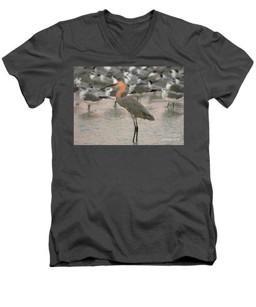 Sunlit Reddish Egret Men's V-Neck T-Shirt by Myrna Bradshaw