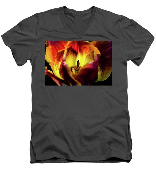 Sunlit Tulip Men's V-Neck T-Shirt
