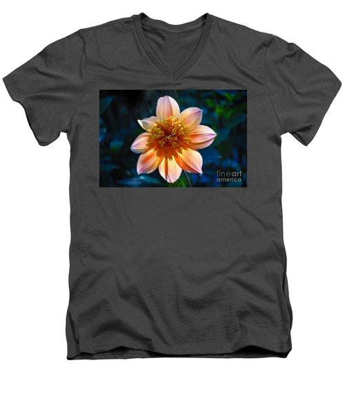 Sunlite Dahlia  Men's V-Neck T-Shirt
