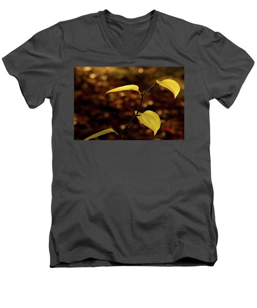 Sunlite Greenbriar Stem Beside The Stream Men's V-Neck T-Shirt